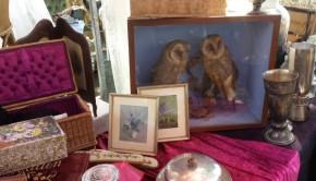 Apeldoorn antiekmarkt uilen
