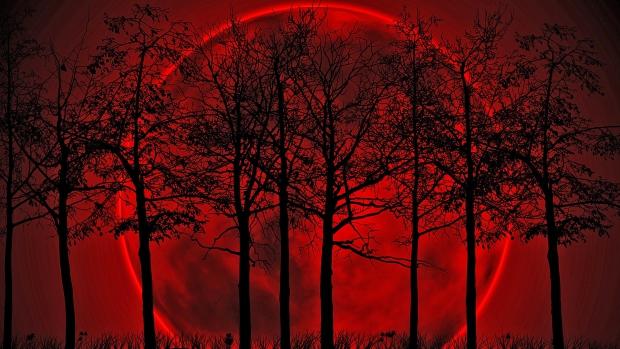 Brekelsveld moord bloed