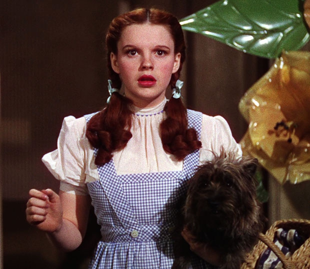 Judy Garland Wizard of Oz jurk