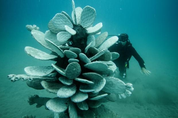 Onderwatermuseum spoken Jason deCaires Taylor Lanzarote zwemmen duiker go with the vlo