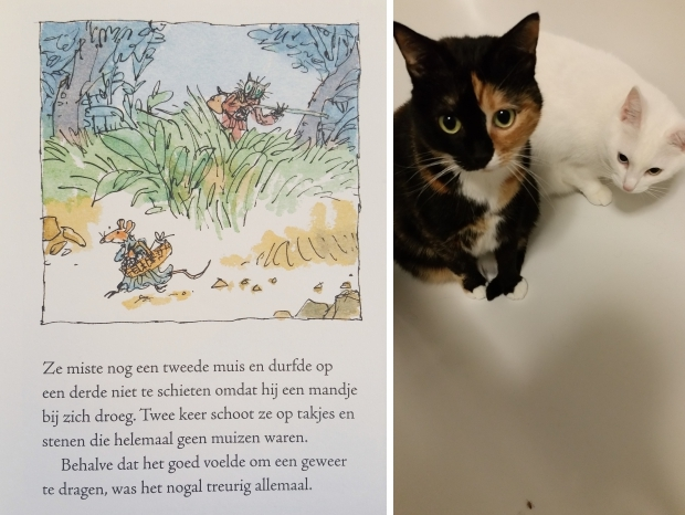 beatrix-potter-de-gelaarsde-poes-go-with-the-vlo
