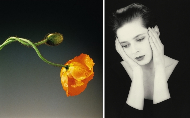 robert-mapplethorpe-tentoonstelling-go-with-the-vlo