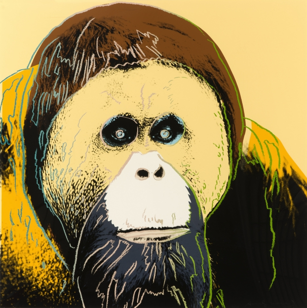 species-orang-utang-popart-go-with-the-vlo