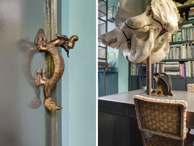 buiksloterdijk-amsterdam-aap-taxidermie-go-with-the-vlo