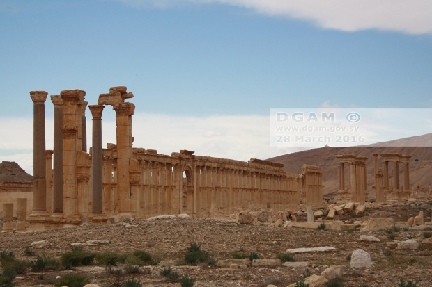 Palmyra Syrië go with the vlo 2