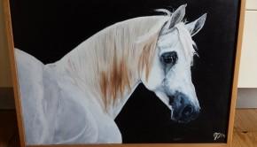 Huuuuuuuu paardenschilderij