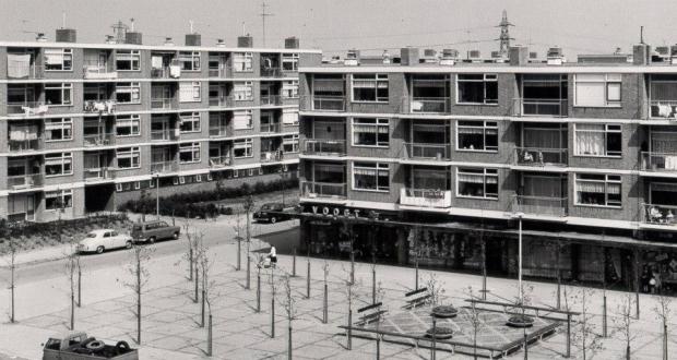 Nieuwland Schiedam huizen go with the vlo