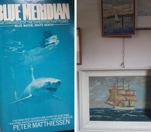Emmaus Wageningen haai en boot