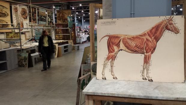 VerzamelaarsJaarbeurs paard