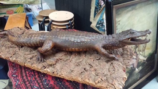Krokodil Brabanthallen rommelmarkt