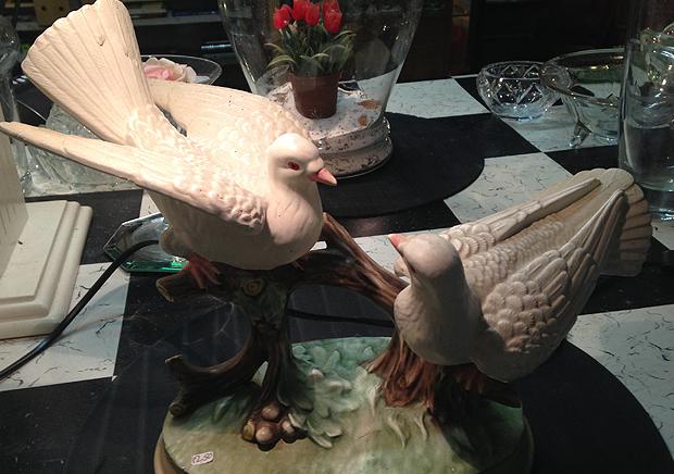 Maassluis-duiven