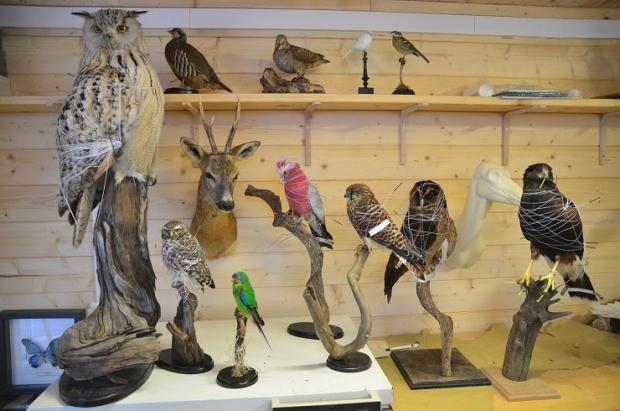 Museumwinkel Nijmegen