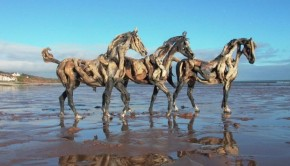 Paarden Heather Jansch