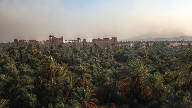 Palmyra tuinen