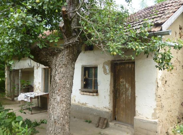 Bulgarije twee huizen te koop perenboom