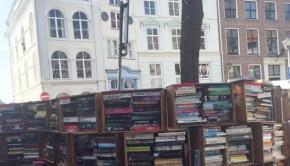 Met de neus in de Deventer Boekenmarkt