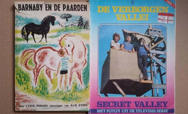 Hattem rommelmarkt kinderboeken