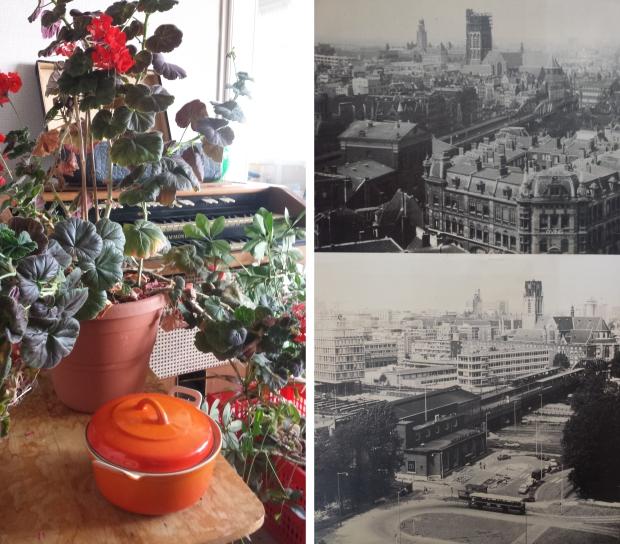 Rotterdam woning ontruimen plant oorlog go with the vlo