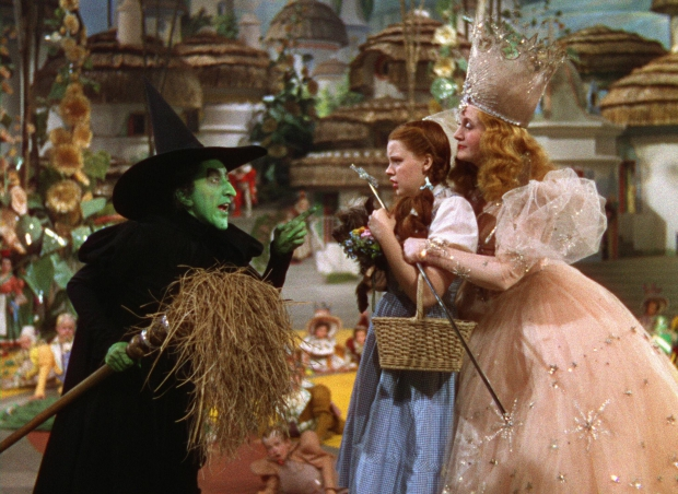 The Wizard of Oz jurk veiling go with the vlo heks