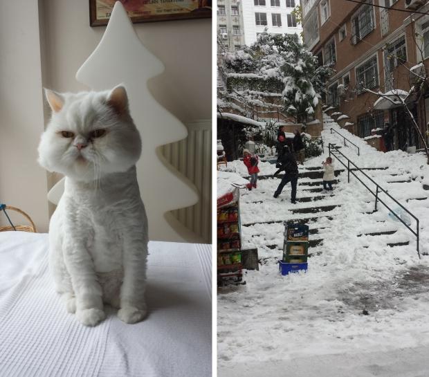 Istanbul kat sneeuwballengevecht