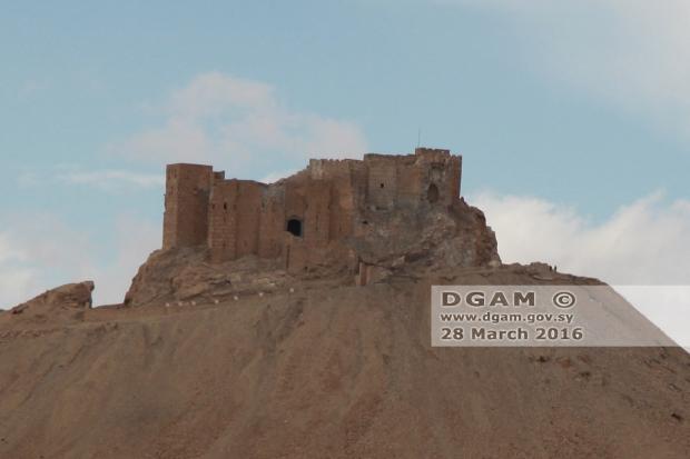 Palmyra citadel go with the vlo