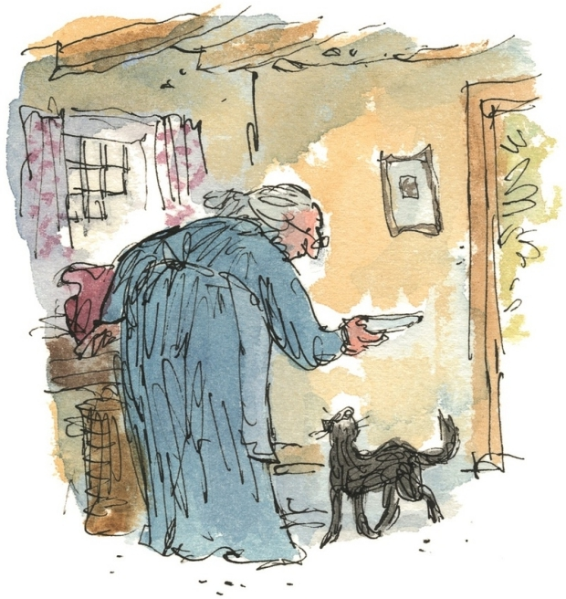 beatrix-potter-the-tale-of-kitty-in-boots-quentin-blake-boek-go-with-the-vlo