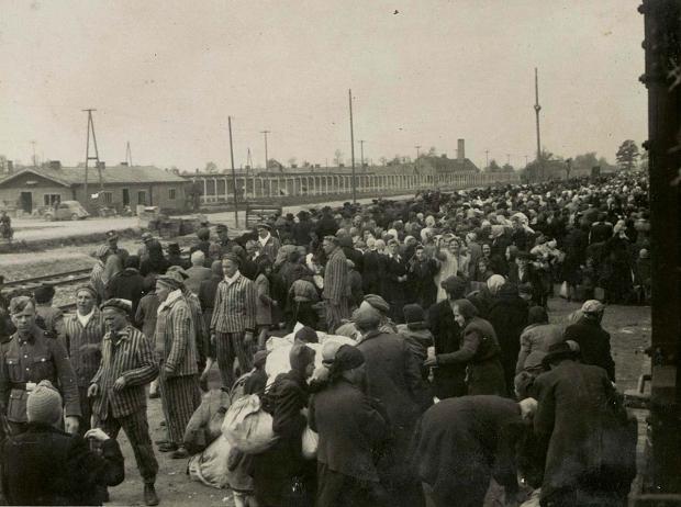 auschwitz-concentratiekamp-treinen-go-with-the-vlo