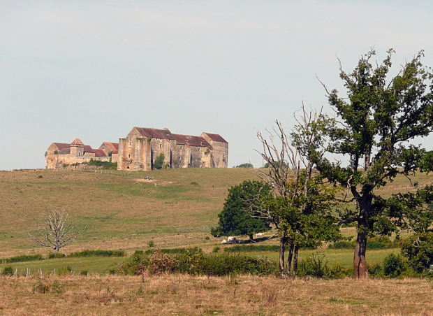 adopte-un-chateau-frans-go-with-the-vlo