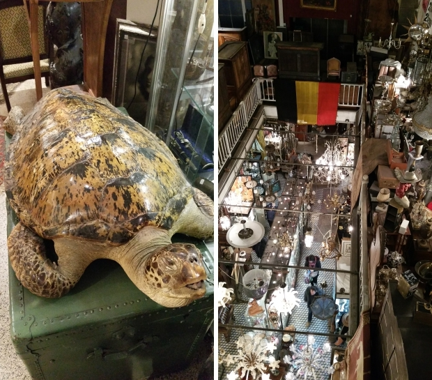 passage-125-blaes-schildpad-brussel-go-with-the-vlo