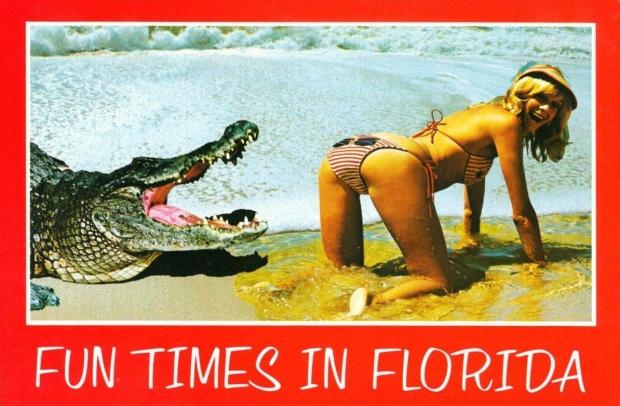 Sexy ansichtkaart Florida alligator go with the vlo