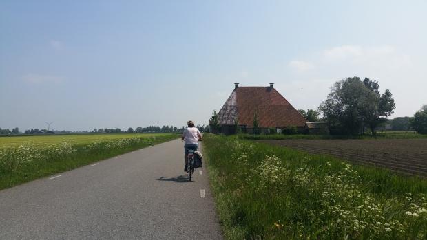 Friese boerderijen te koop go with the vlo