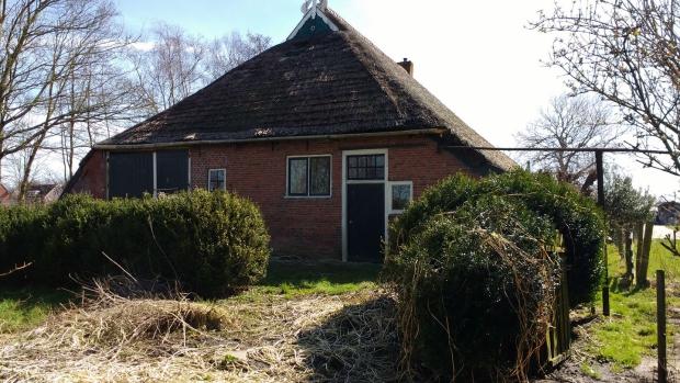 Friesland boerderij Driezum achterzijde go with the vlo