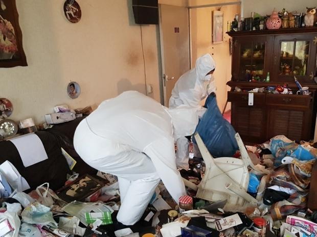 Frisse Kater reinigen schoonmaken huizen go with the vlo
