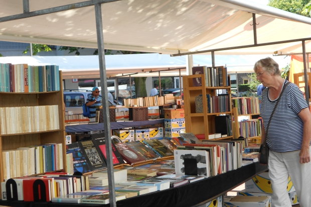 Delftse Boekenmarkt 2019 tweedehands boeken go with the vlo