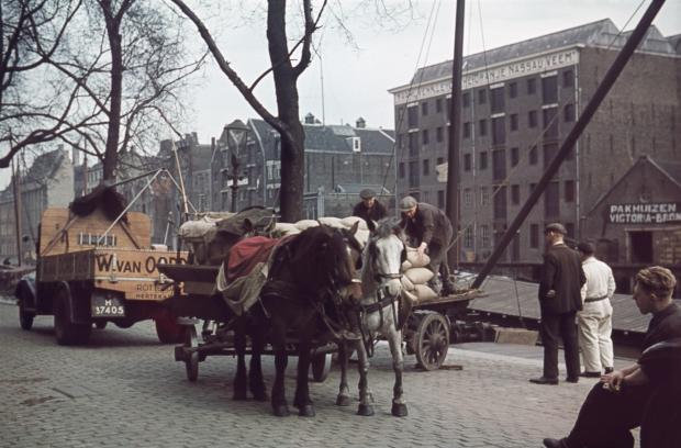 Scheepmakershaven paarden vracht Rotterdam jaren dertig Richard Boske go with the vlo